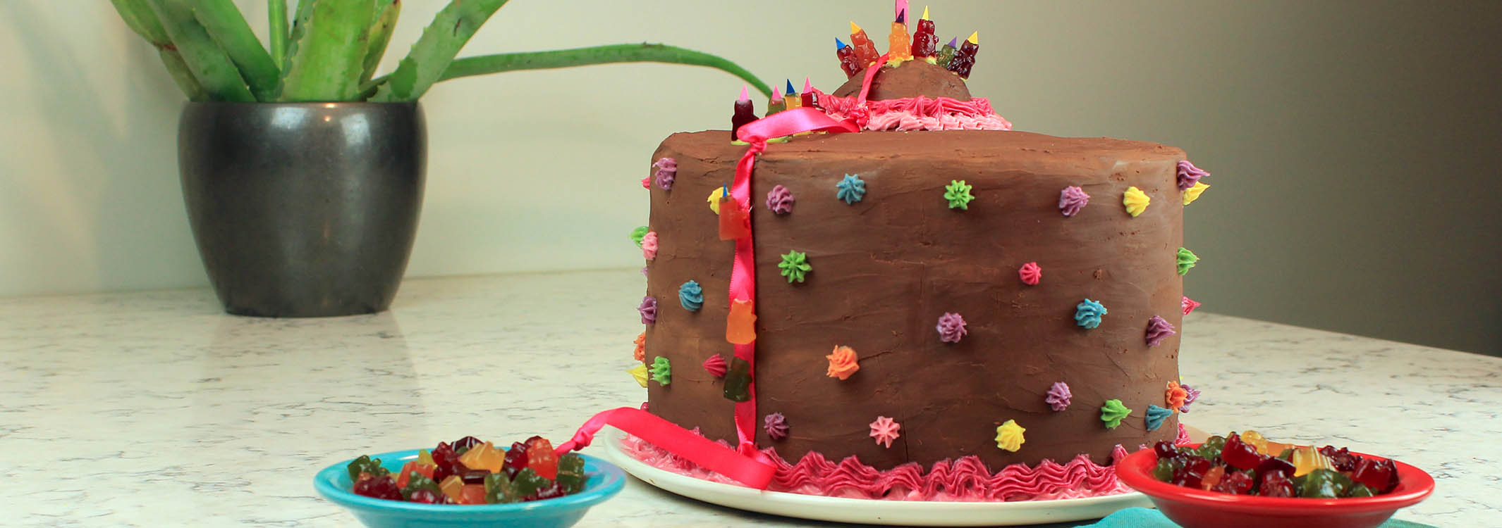 Chocolate Gummy Bear Rainbow Cake Veronica Qubrossi